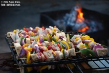 Spiedini di carni e verdure miste